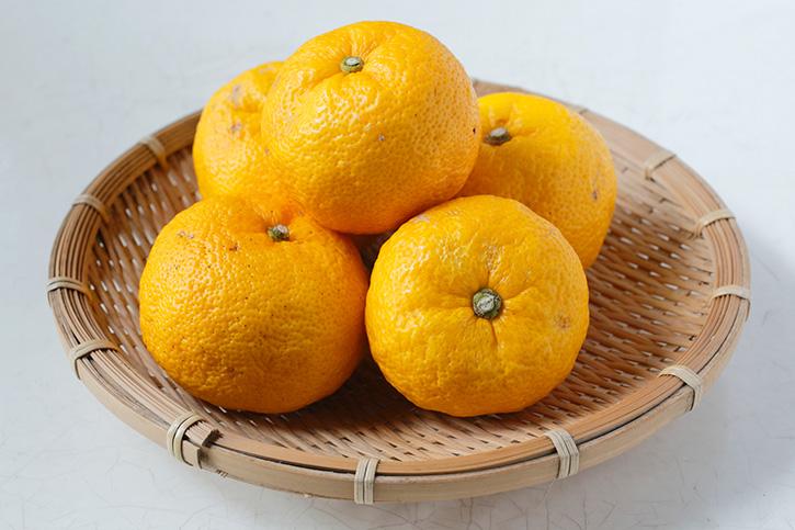 旬の食材「柚子」