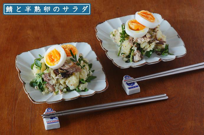 鯖と半熟卵のサラダ